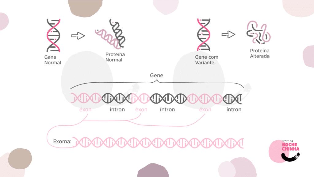 Entenda o Sequenciamento de Nova Geração (NGS) | Teste da Bochechinha